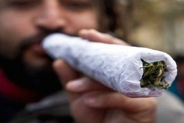 cannabis-overdose