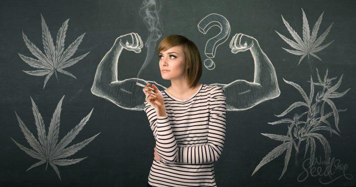 marijuana and bodybuilding answered